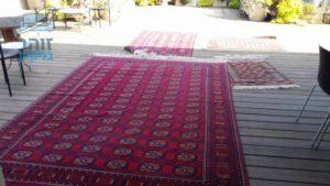 ניקוי שטיח ורוד כהה מכתמים של קפה ושתן של כלב
