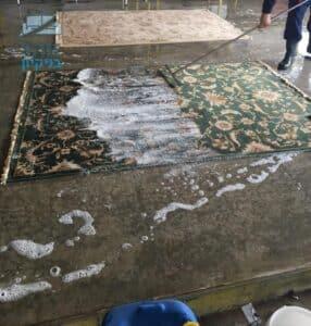 שטיח פרסי צבע ירוק בשלבי ניקיון